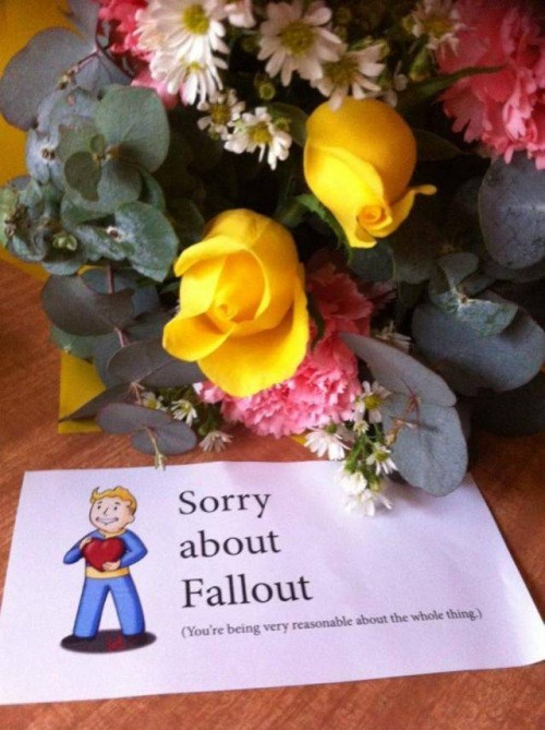 sorry about fallout bouquet