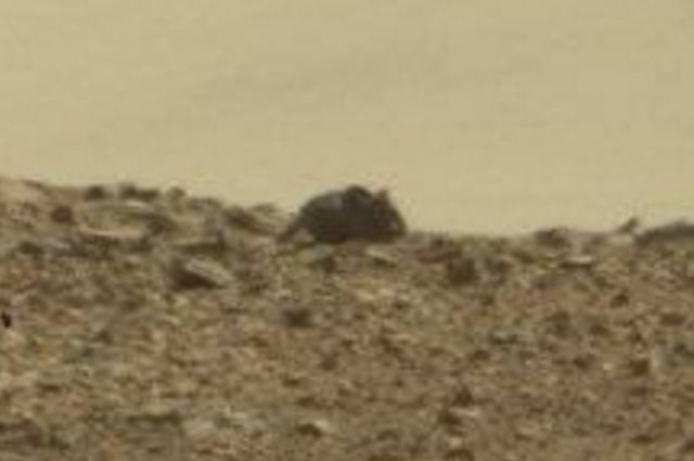 mice aliens image Alien of the Day: Is There Life on Mars?