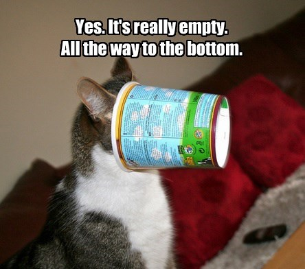 Yes. It's really empty. All the way to the bottom.