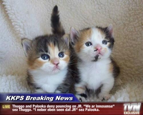"""KKPS Breaking News - Thuggo and Palooka deny pouncing on JR. """"We ar innosense"""" sez Thuggo. """"I neber eben seen dat JR"""" sez Palooka."""