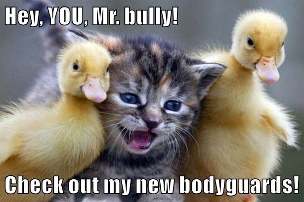 Hey, YOU, Mr. bully!  Check out my new bodyguards!