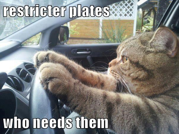 restricter plates  who needs them