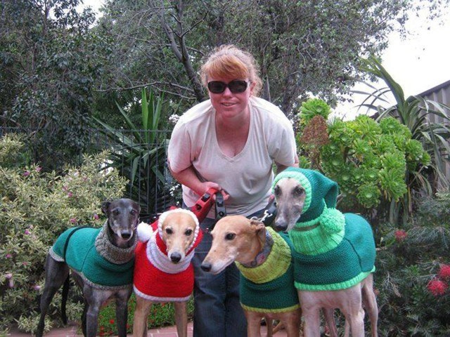 dogs cute This Woman Quit Her Day Job to Knit Dog Sweaters for a Good Cause