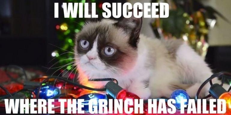 Grumpy Cat At Christmas