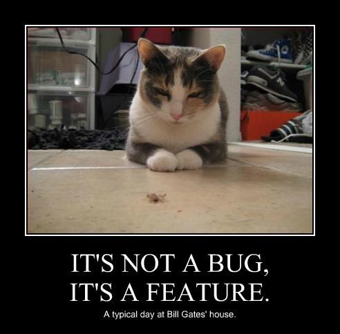 cat bug windows Bill Gates - 8591811072
