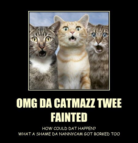 OMG DA CATMAZZ TWEE FAINTED