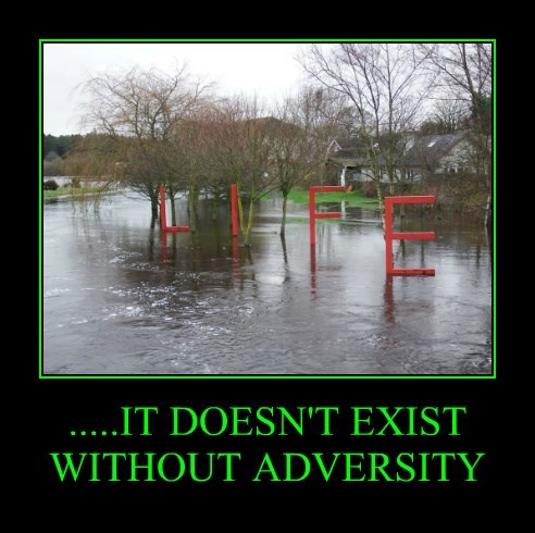 .....IT DOESN'T EXIST WITHOUT ADVERSITY