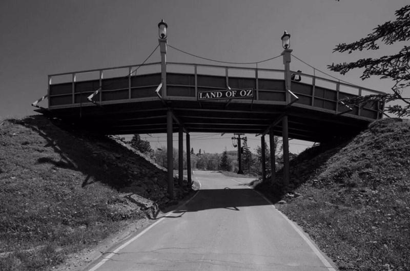 Bridge - LAND OF OZ