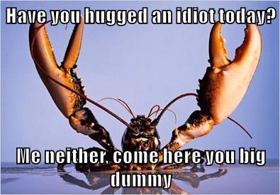 Have you hugged an idiot today?  Me neither, come here you big dummy