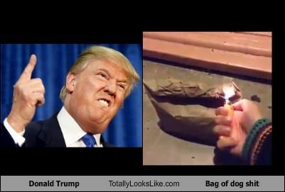 Donald Trump Totally Looks Like Bag of dog shit