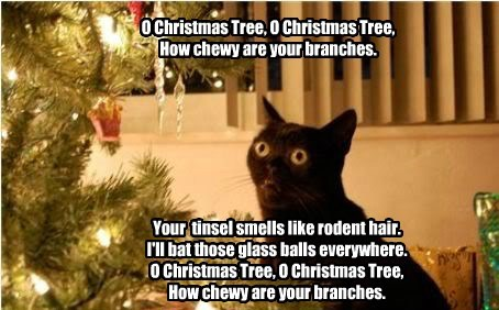 song christmas tree Christmas Carols caption Cats funny - 8592813568