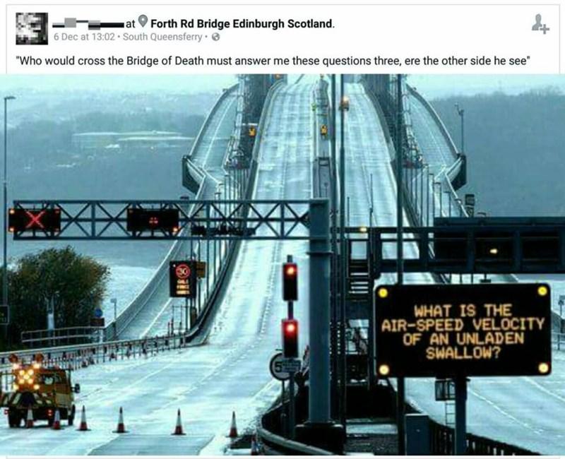 funny memes monty python bridge sign