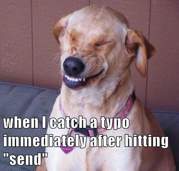 animals dogs after catch immediately send typo caption hitting - 8592840704