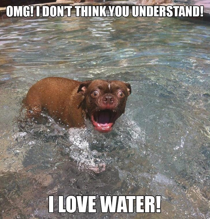Funny or Not/Facts about water - You decide!