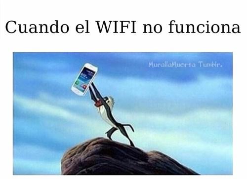 el wifi no funciona