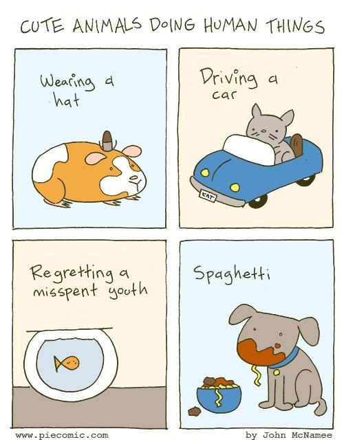 web comics regret Aww, That Goldfish Thinks He's People!