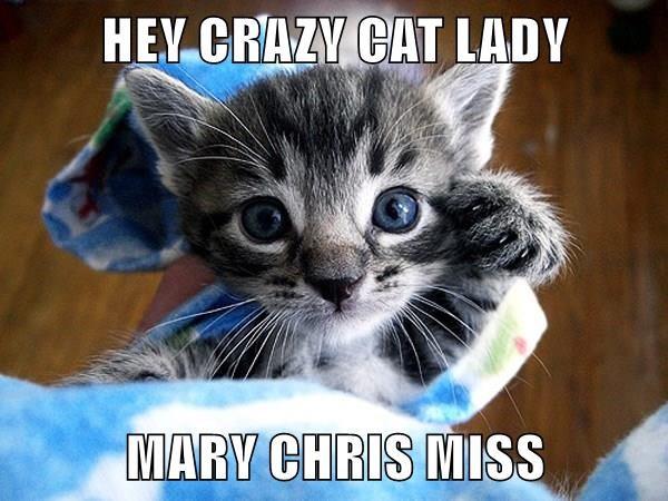 HEY CRAZY CAT LADY  MARY CHRIS MISS