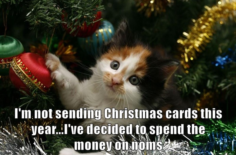 I'm not sending Christmas cards this year...I've decided to spend the                                    money on noms