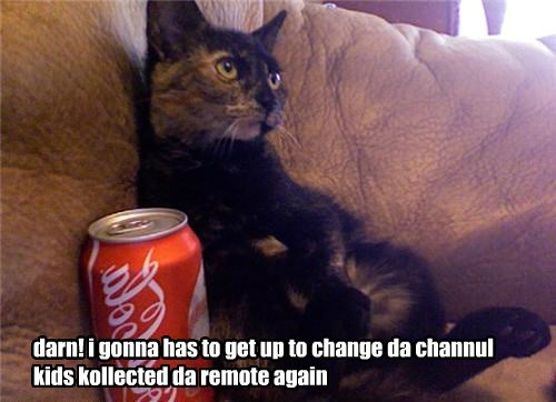 darn! i gonna has to get up to change da channul kids kollected da remote again