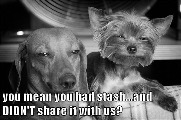 animals share dogs stash pot caption funny - 8594168832
