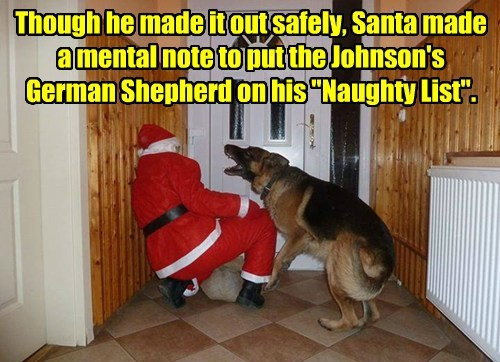 dogs naughty list santa caption funny - 8594276864