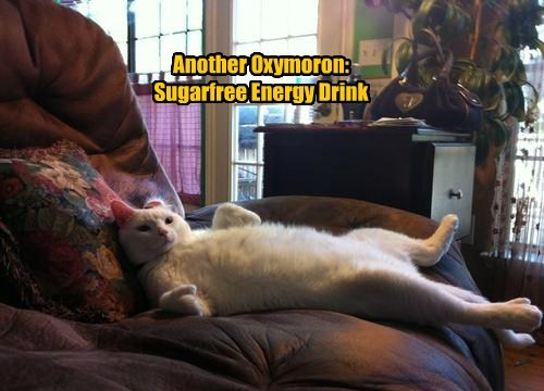 energy drink lazy sugar caption Cats funny - 8594512384