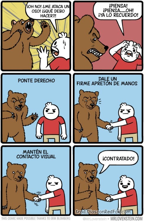 contra el oso