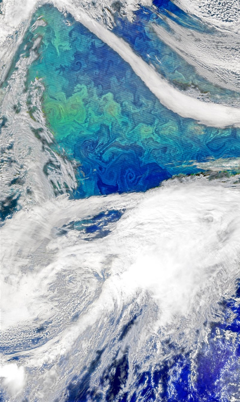 science NASA Captures a Stunning Image of the North Atlantic Ocean, Who Knew Phytoplankton Could Look So Good?