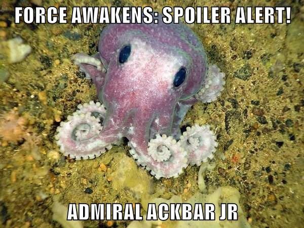 FORCE AWAKENS: SPOILER ALERT!  ADMIRAL ACKBAR JR