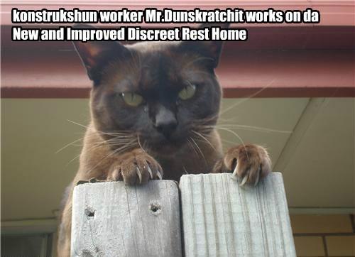 Discreet Rest Home rebuild