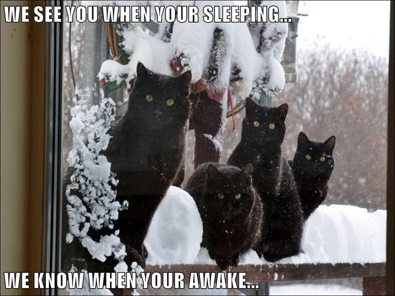 WE SEE YOU WHEN YOUR SLEEPING...  WE KNOW WHEN YOUR AWAKE...