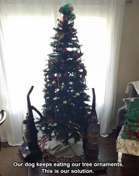 tumblr post of people who put vacuum cleaners around tree to keep dogs from eating ornaments
