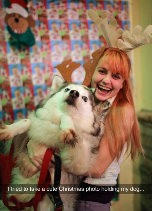 Funny photo of girl holding up dog for christmas photo