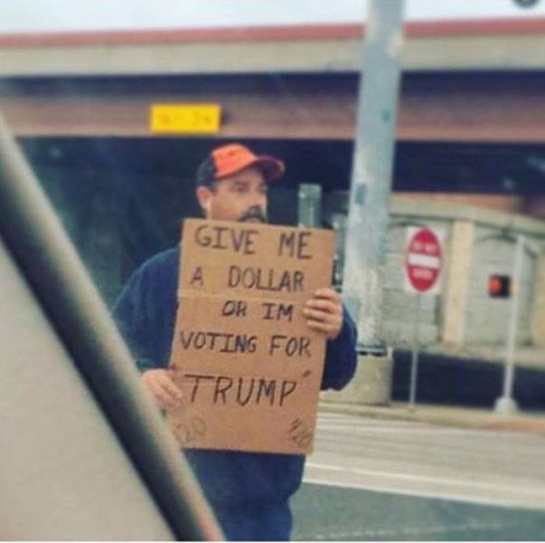 funny memes dollar or voting trump