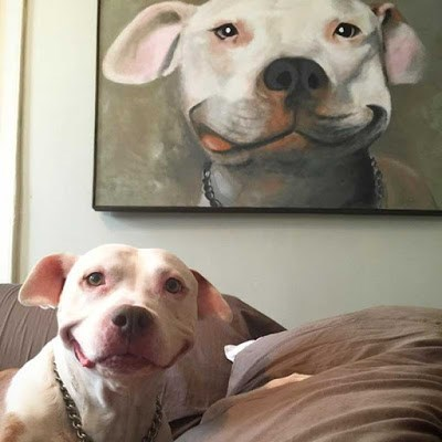 cute photo of dog smiling next to portrait of dog smiling