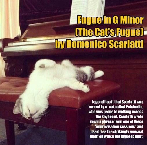 Music piano true story caption Cats - 8597801472