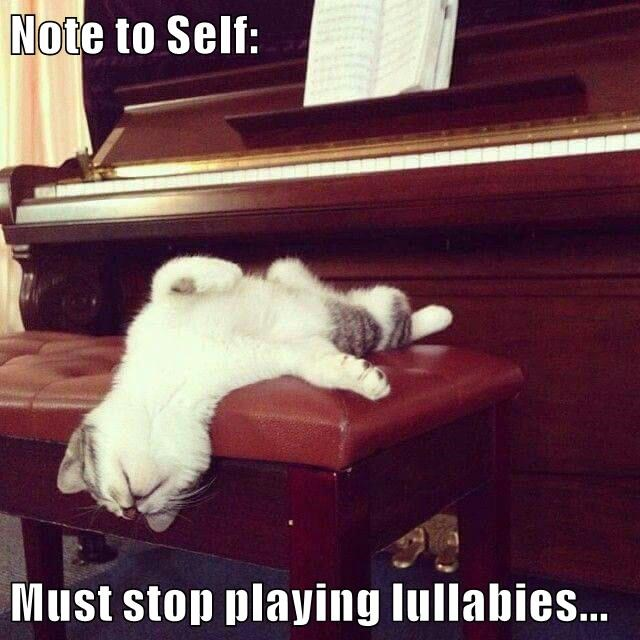 note to self,piano,nap,lullaby,caption,Cats,funny