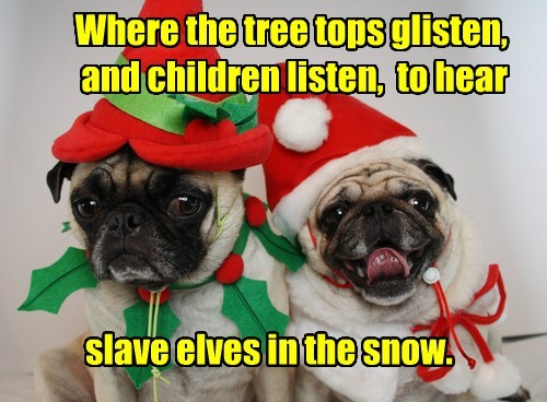 dogs caption elves funny - 8598028800