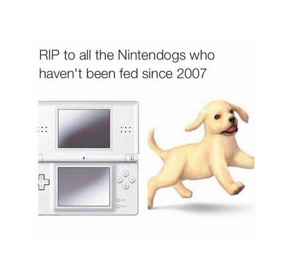 video games nintendogs rip