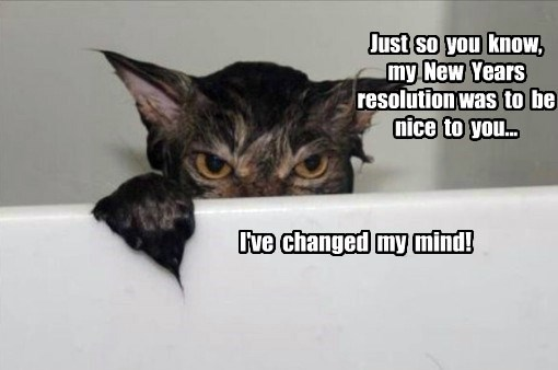 new years resolutions bathroom caption Cats funny - 8598621952