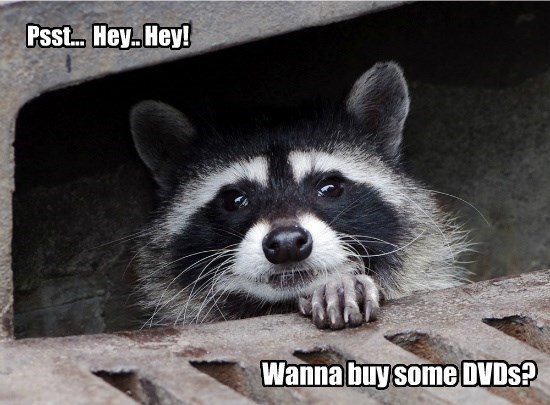 Psst... Hey.. Hey! Wanna buy some DVDs?