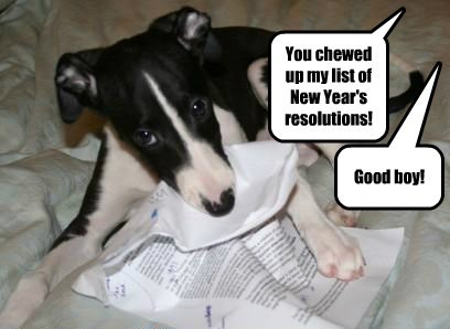 The Dog Ate My Resolutions
