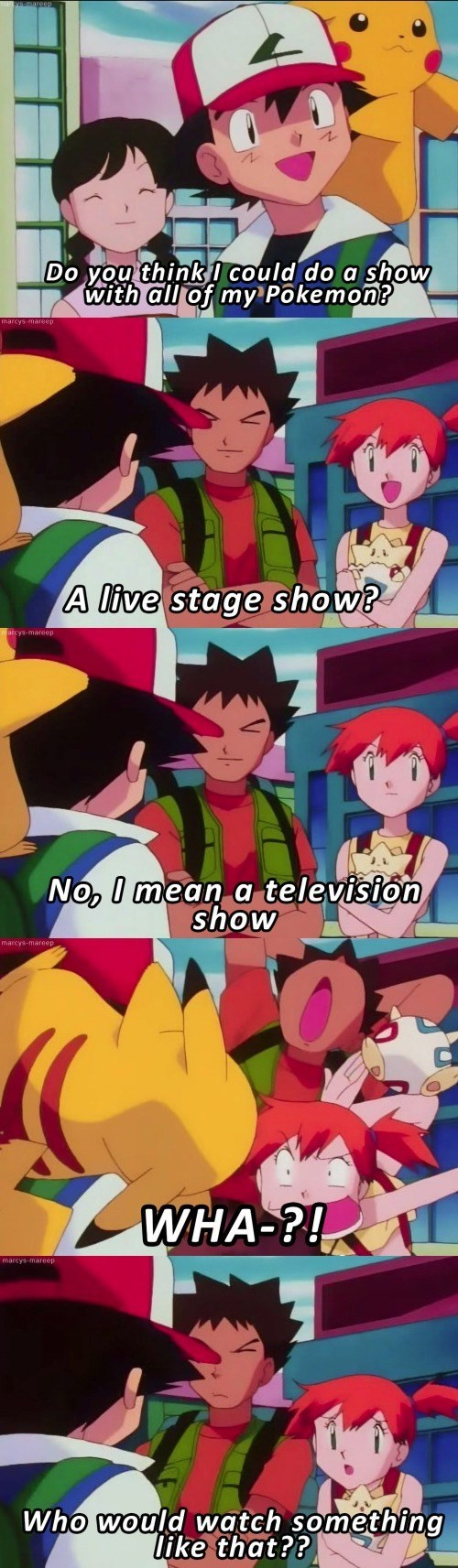 pokemon memes who would watch a show about ash