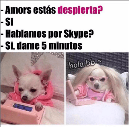 hablamos por skype