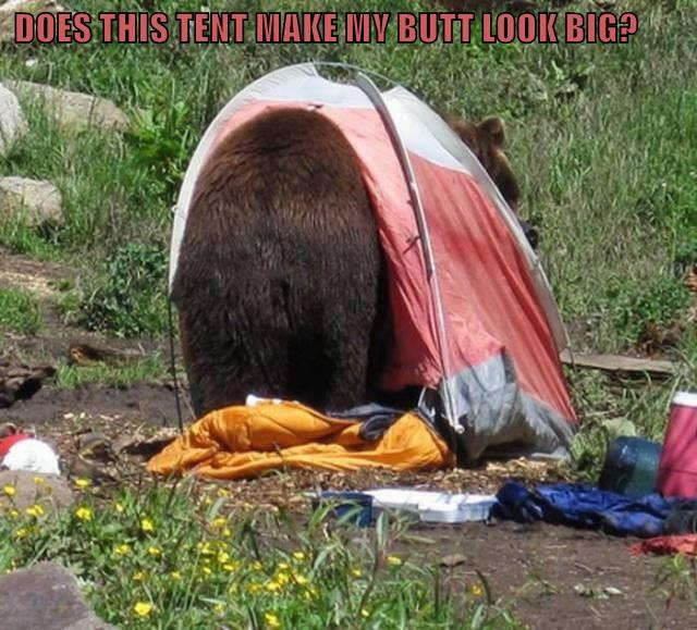 DOES THIS TENT MAKE MY BUTT LOOK BIG?
