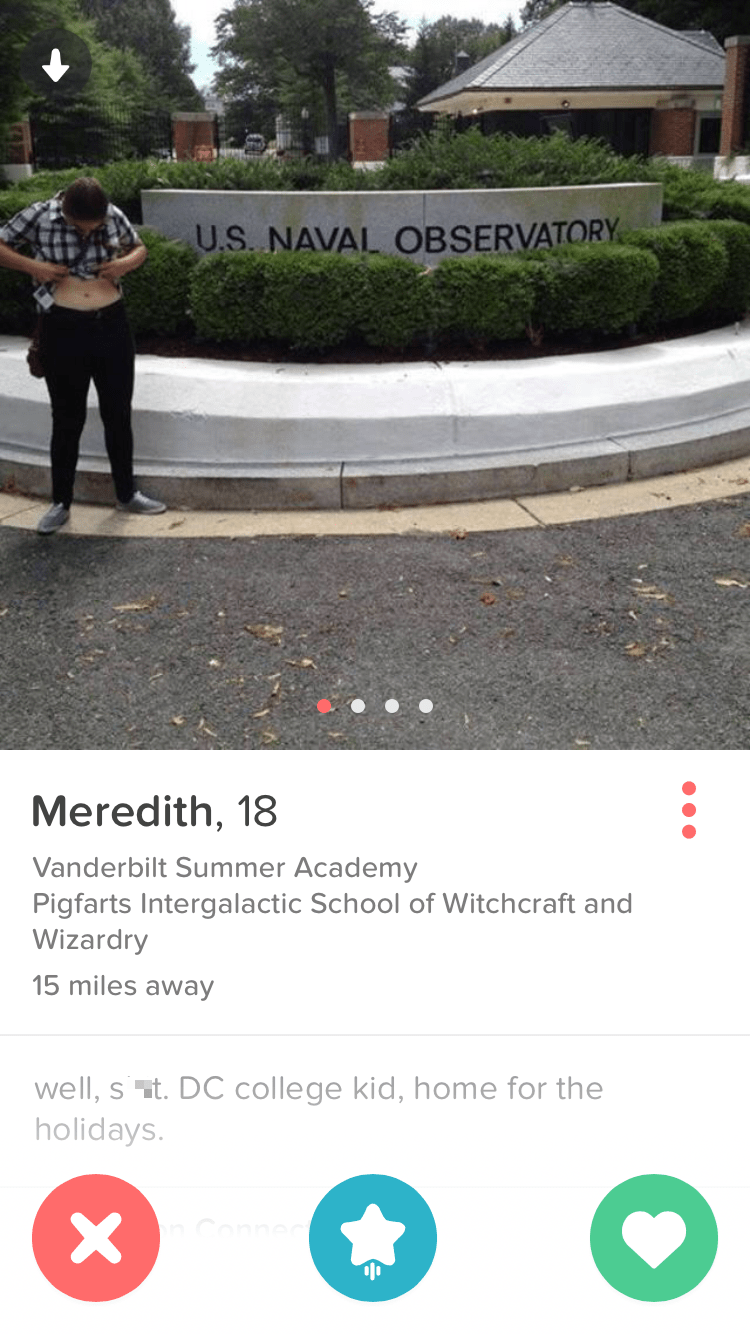 funny dating image girl's tinder profile pun game is strong