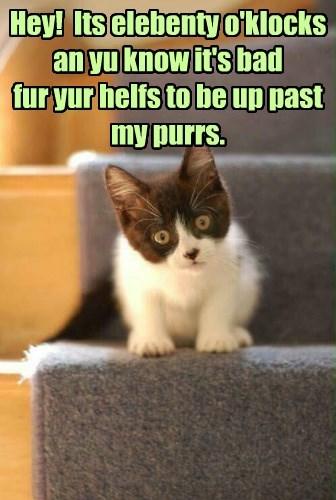 Kittie purrs yu to sleeps!