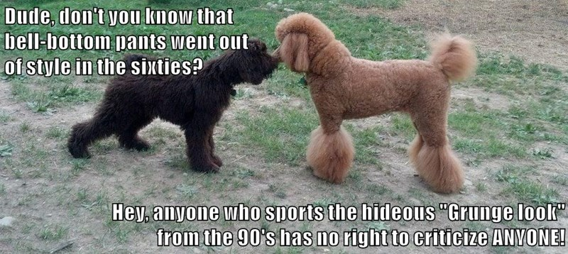 animals dogs fashion bell bottoms grunge - 8600236800