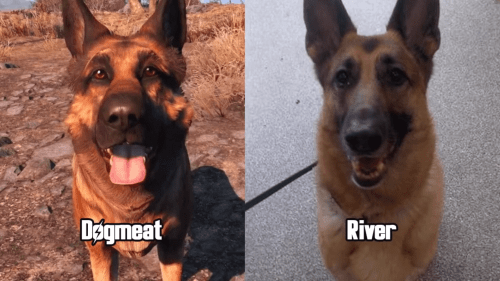 Meet Dogmeat's Voice Actor, River