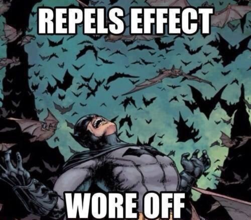 funny memes batman repel wore off